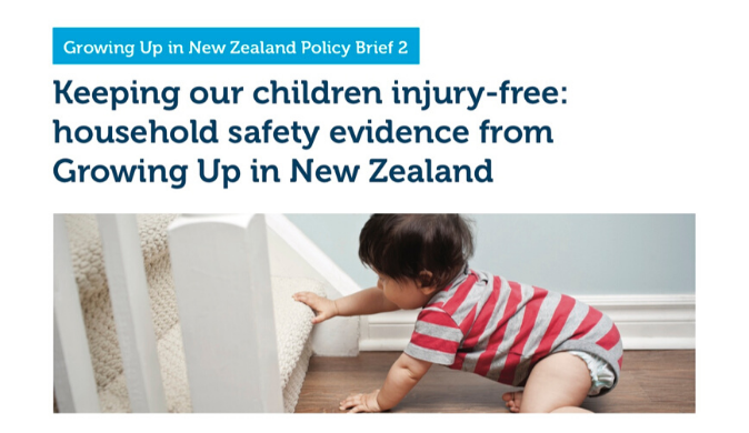 policy_brief_2_household_safety_v2.png